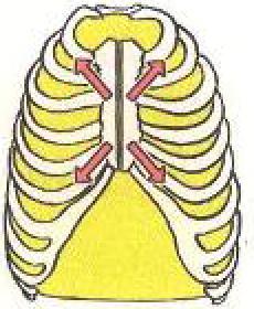 心臓手術では心臓を直接視野に入れるために胸骨正中切開を行います。解り易く言うと、一枚板の胸骨という骨を真ん中から切り分けます。